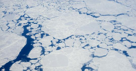 polar icecsaps