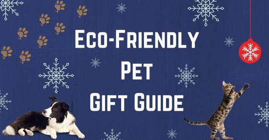 Eco-FriendlyPetGift Guide