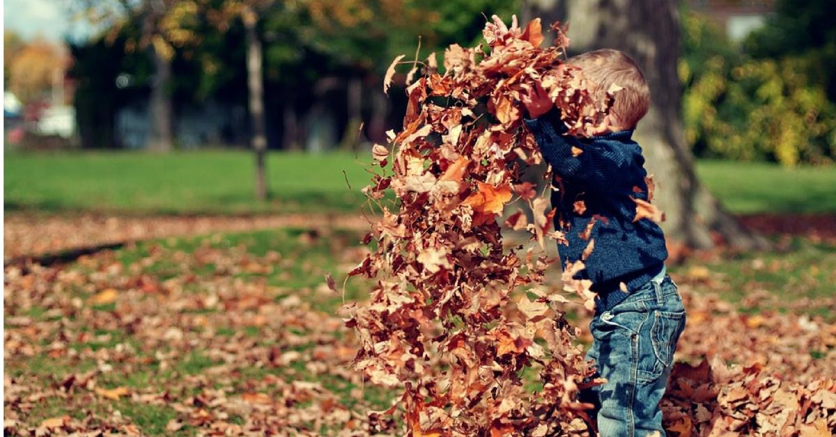 Favorite Fall Memory