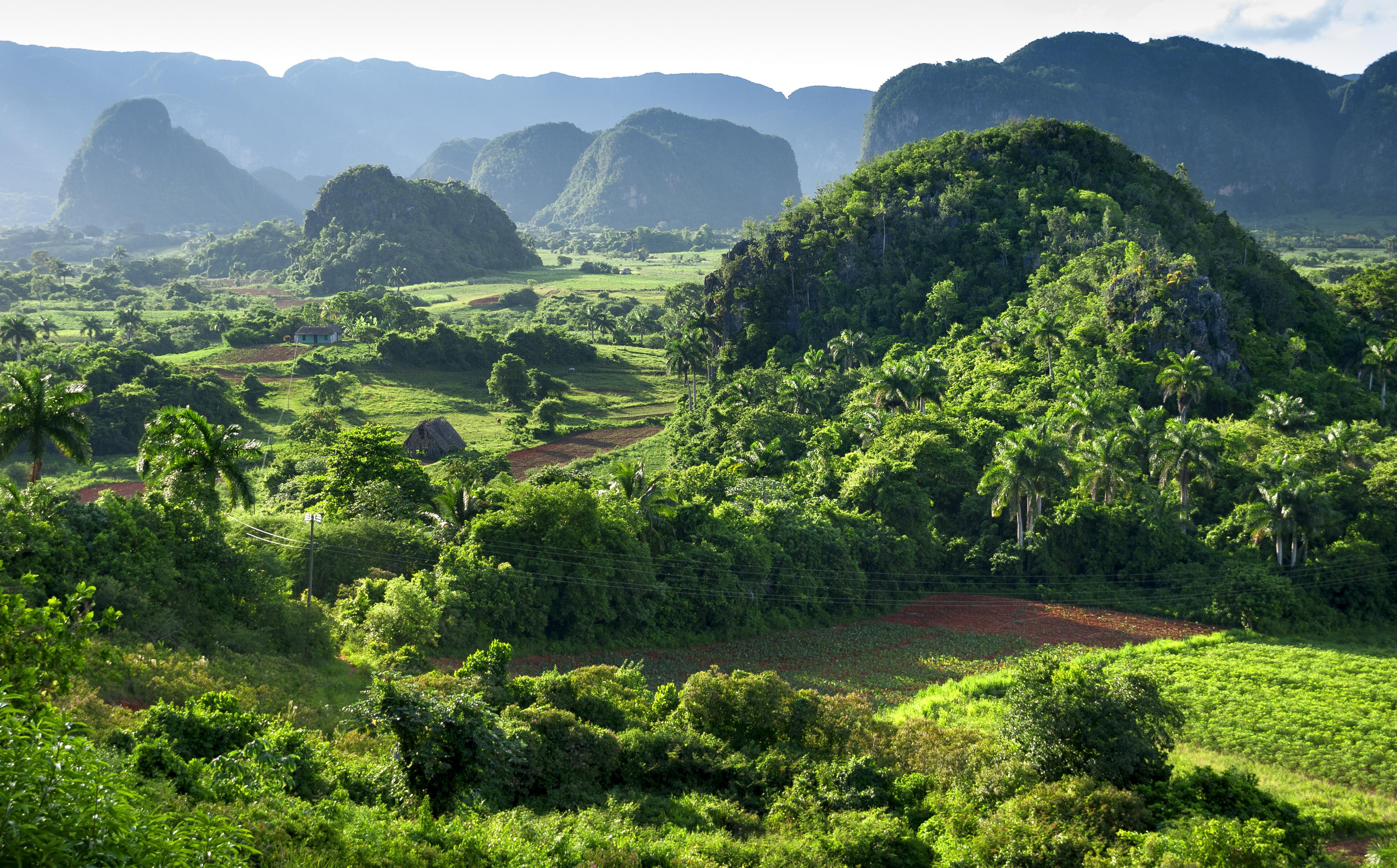 landscape of valley of Vinales biosphera reserve,Cuba