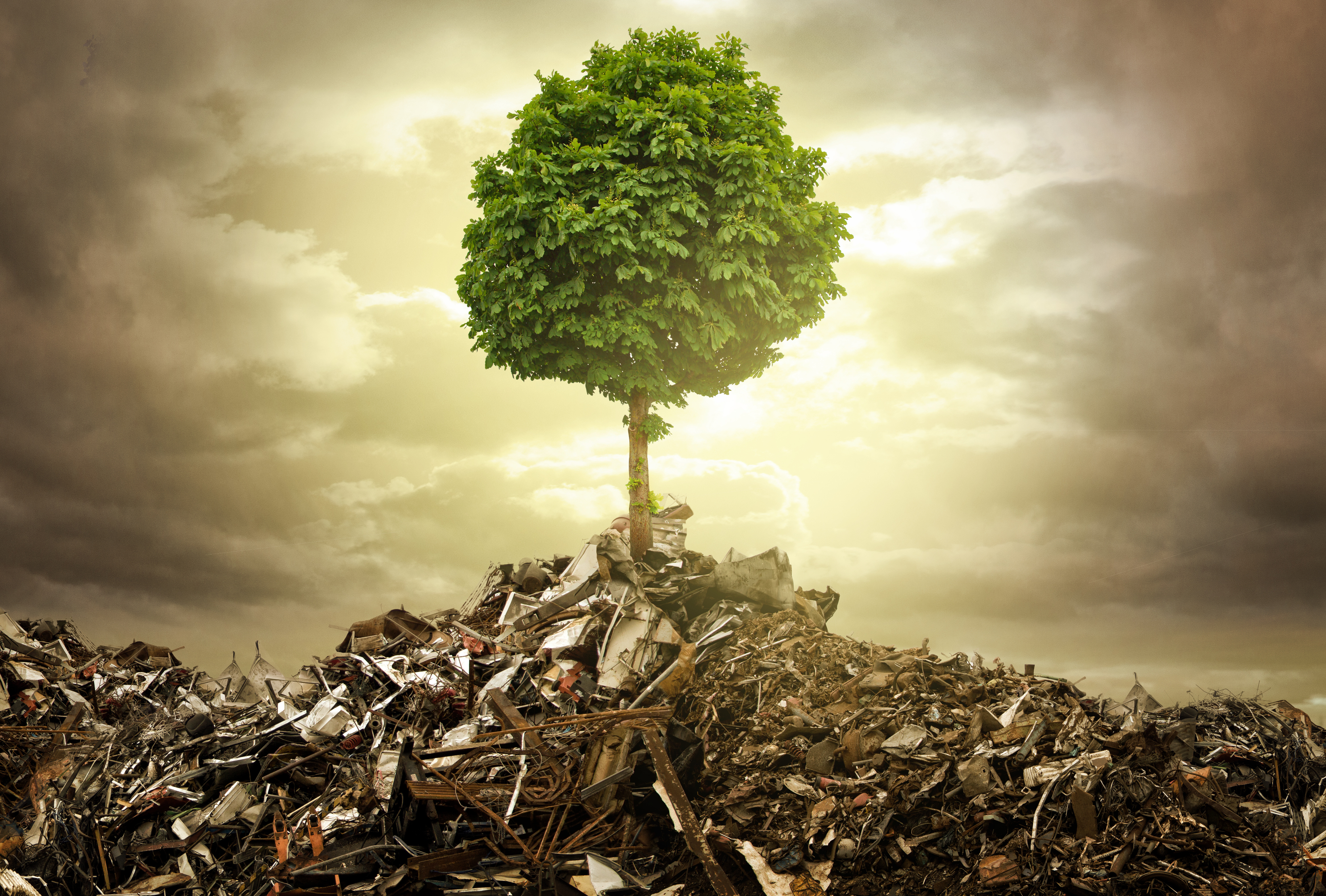 Be Kind To The Planet: Recycle, Reuse and Reduce