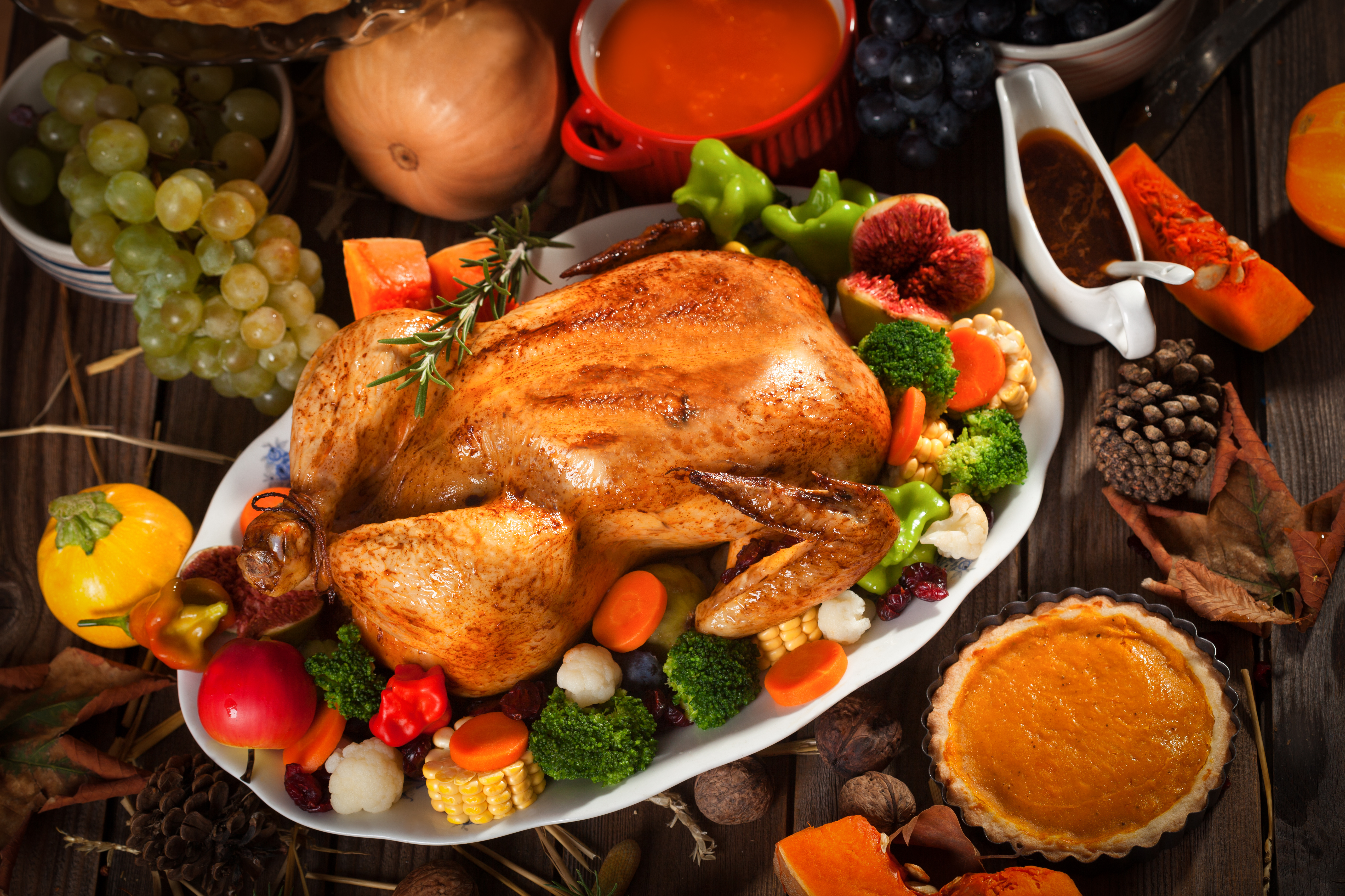 A PET-FRIENDLY AND ECO-FRIENDLY THANKSGIVING