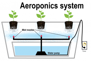 www.aeroponicssystems.com