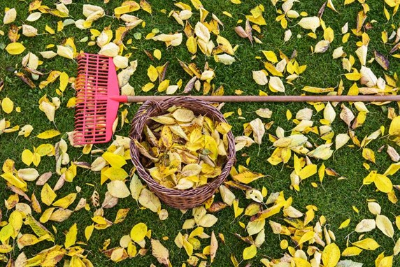 5 Eco-Friendly Ways to Prep Your Home for Fall